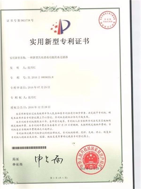 桂川光普-消毒功能水过滤器专利